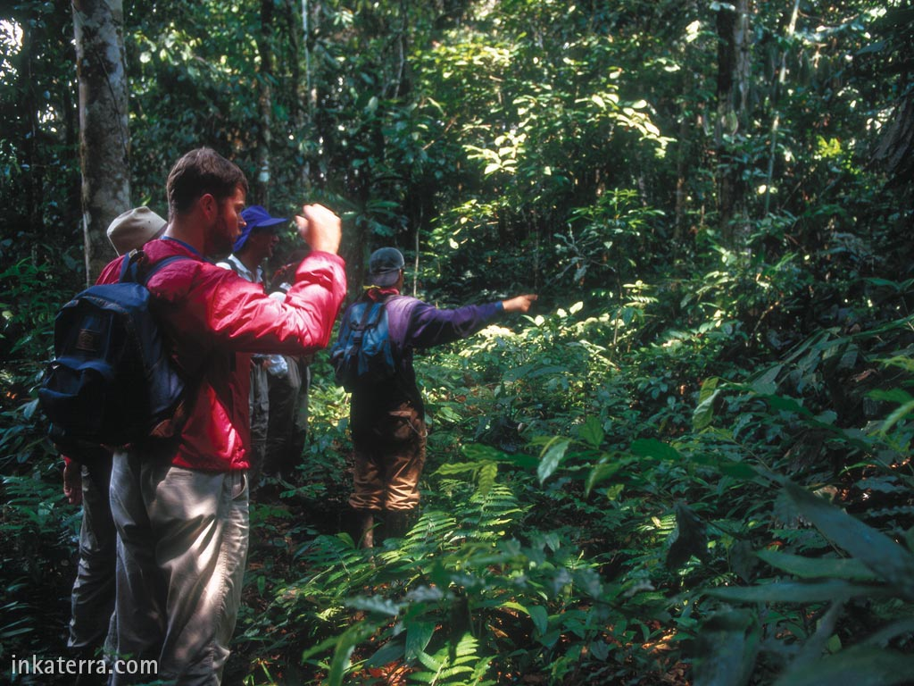Reserva Amazónica