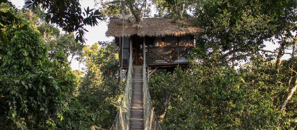 INKATERRA CANOPY TREE HOUSE* : canopy tree houses - memphite.com