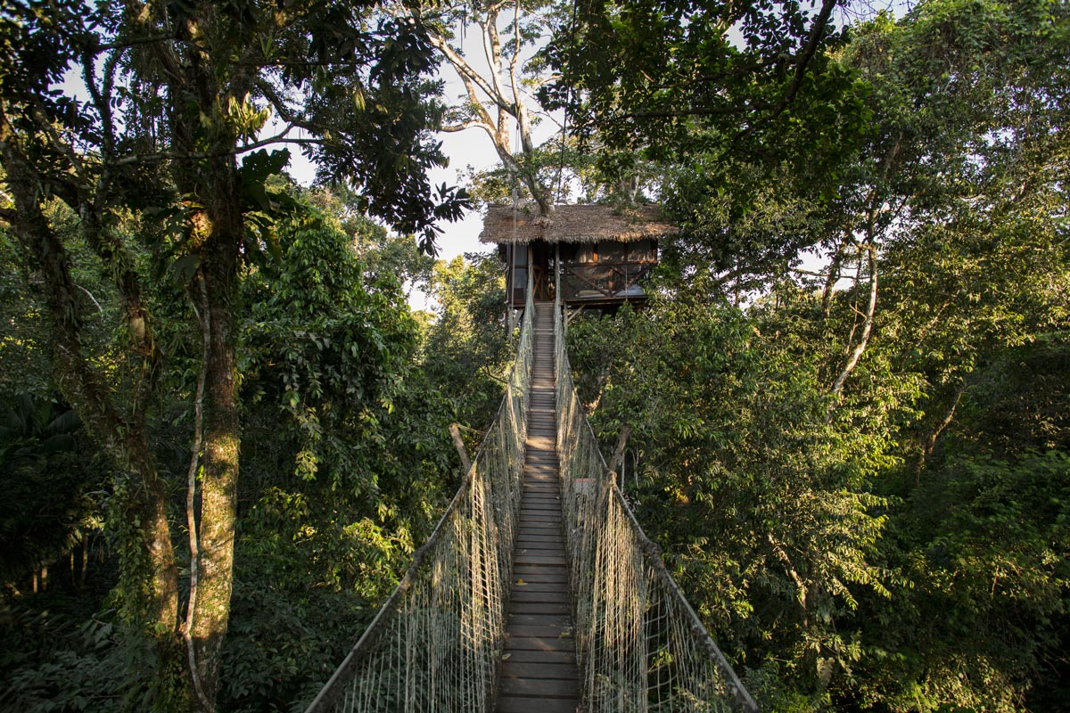 Inkaterra Canopy Tree House : canopy tree houses - memphite.com
